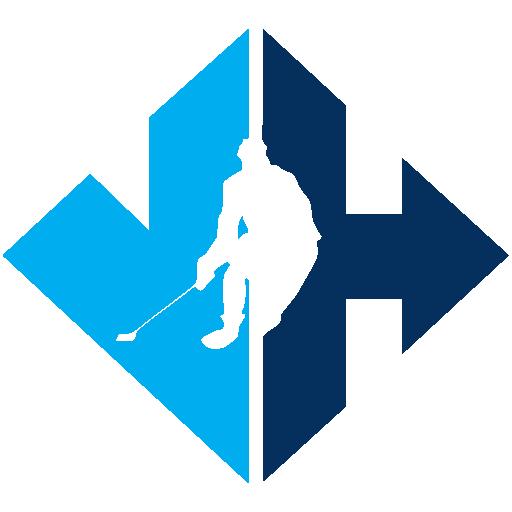 Virtual Hockey